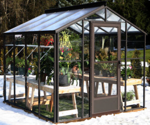 Acadian 8 x 8 Greenhouse
