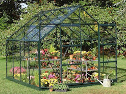 halls magnum tempered glass greenhouse