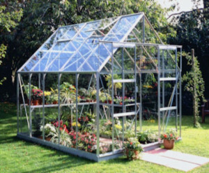 Halls Magnum Glass Greenhouse, Mill Frame