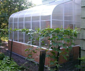 Evangeline Lean-To Greenhouses