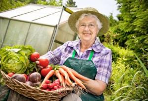 Greenhouses Information