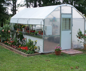 Polyfilm Greenhouse with White Polyfilm