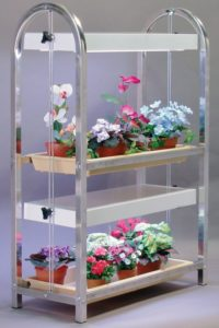 Plant Stands Indoor