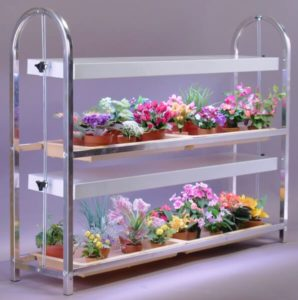 Plant Stands Indoor with 2 Tiers, 4 Trays