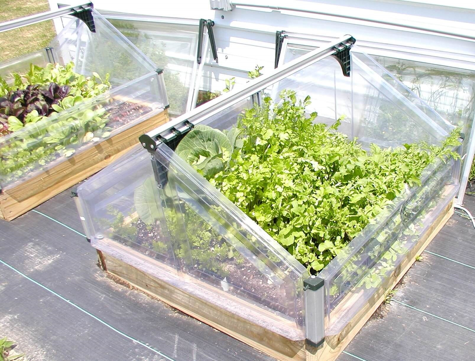 Double Cold Frame |Extend Your Growing Season | Advance Greenhouses