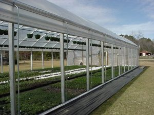 roll up side curtains for greenhouse