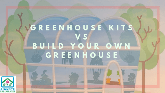 Greenhouse Kits vs Build Your Own Greenhouse