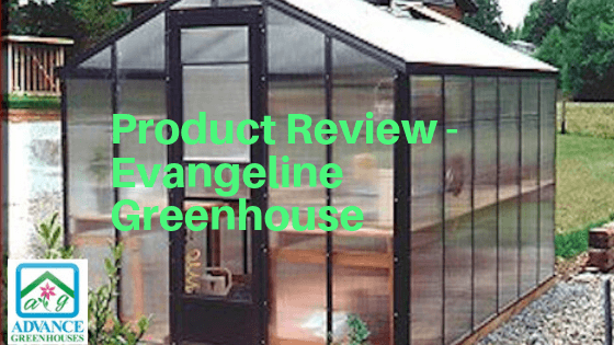 Review of Evangeline Polycarbonate Greenhouse