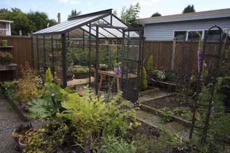 8 x 8 glass greenhouse
