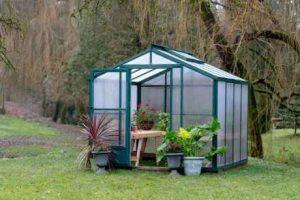8 x 8 Evangeline Greenhouse